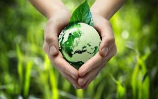 Green Energy PartnershiponeMR